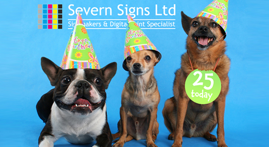 birthday-banner-widgekit
